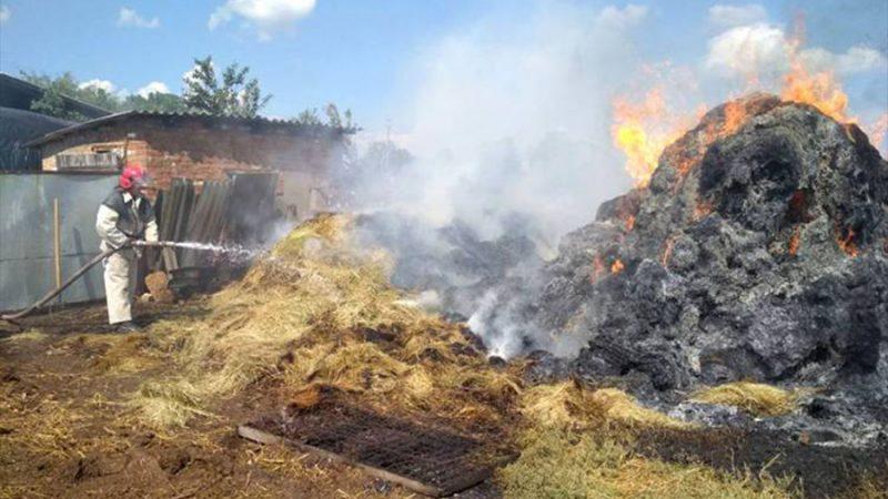 На Вінниччині вогонь знищив запаси корму для свійських тварин