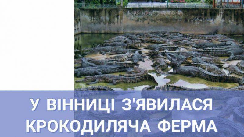 У Вінниця з'явилася крокодиляча ферма