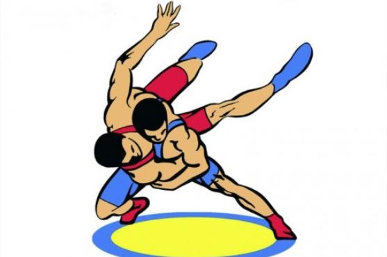 Вінниччани здобули медалі на чемпіонаті України з греко-римської боротьби