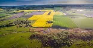 Одній з громад Вінниччини повернуть землю вартістю у понад півмільйона гривень