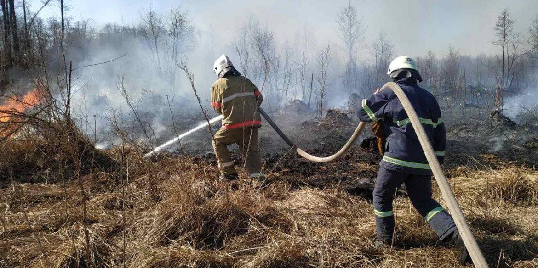 Пожежники Вінниччини 49 разів виїжджали на боротьбу з пожежою у екосистемах протягом останньої доби