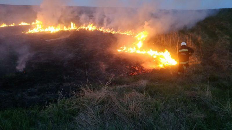 Протягом минулої доби на Вінниччині зафіксували 5 пожеж у екосистемах