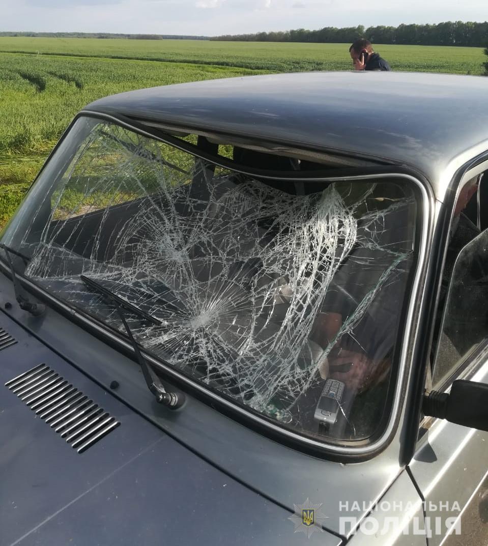 На Вінниччині водійка збила колишнього співмешканця. Чоловік загинув
